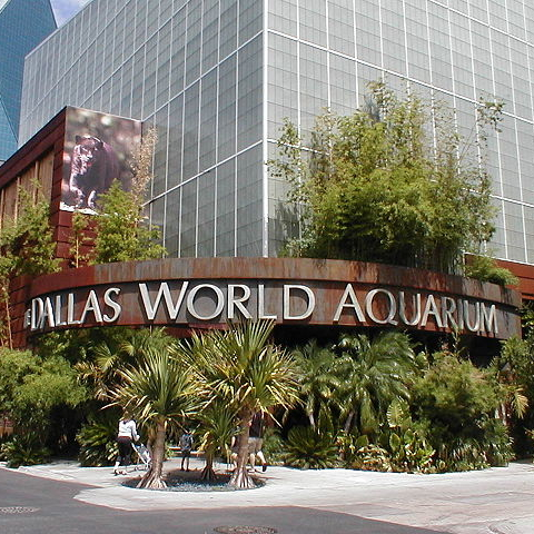 Dallas World Aquarium Dallas Estados Unidos Informaci N