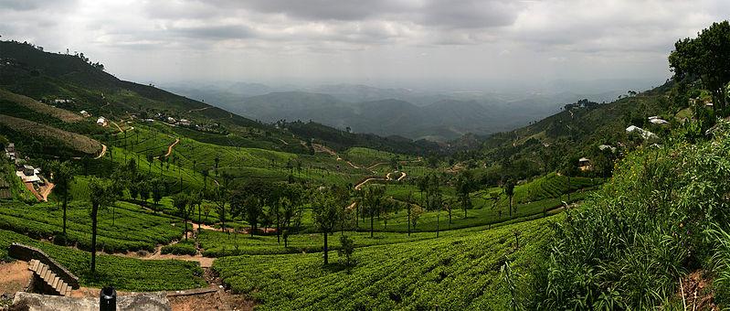 List Of Tourist Attractions In Haputale Sri Lanka Touristlink