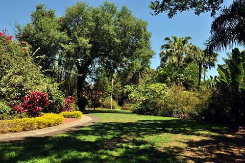 Sunken Gardens St Petersburg United States Tourist Information